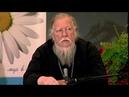 Протоиерей Димитрий Смирнов. Почему в современном мире мало христианских семей