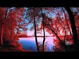 В красные тона.  Раймонд Паулс  In red Tones.  Raymond Pauls  ВидеоКанал exZotikA Max