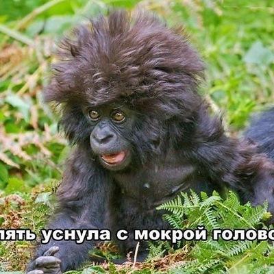 Катька Коренько, 7 октября 1987, Борисов, id120454445