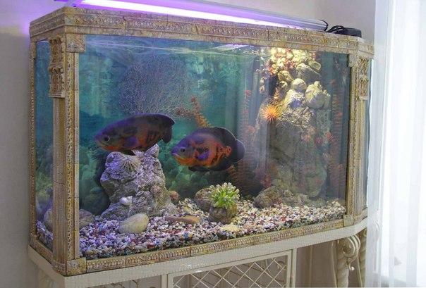 Как сделать своими руками гроты для аквариума