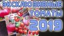 Эксклюзивные томаты 2019 розыгрыш
