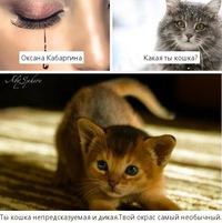 Оксана Кабаргина