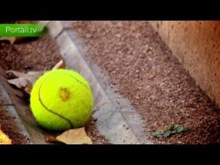 Сколько стоит занятие энергичным, динамичным и красивым видом спорта - большим теннисом?