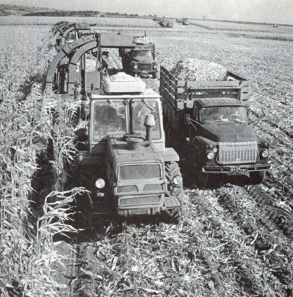 трактор мтз 80 бишкек? - Q&A