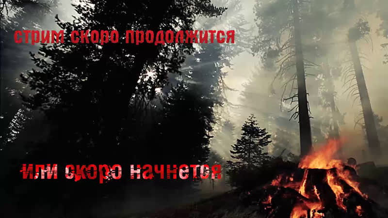 Easy_Balalayka - в прямом эфире