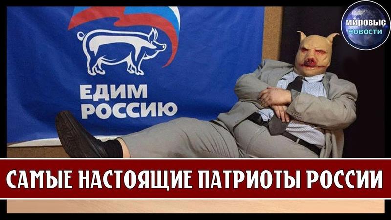 КАК ДЕПУТАТЫ - ПАТРИОТЫ ЖИВУТ ЗА ГРАНИЦЕЙ! ЕДИНАЯ РОССИЯ - ГЛАВНЫЕ ПАТРИОТЫ СТРАНЫ!