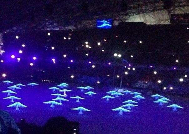 Голуби, летите-летите! Олимпийский флаг подняли, клятвы принесли - Зимние игры в Сочи открыты! Ура! #ЦеремонияОткрытия #Sochi2014 #live