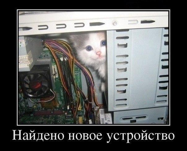 http://cs412217.vk.me/v412217715/178f/lBwtSlwD4mQ.jpg