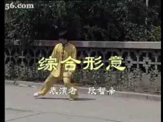 Ученик Мастера Ян Фаньшэна (杨凡生) (Синьицюань Чэ)