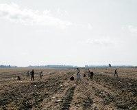 Поле широкое, русское поле