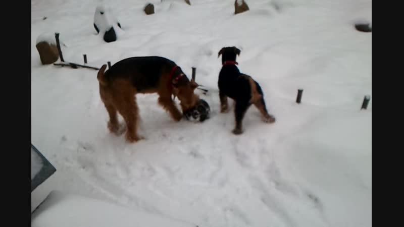 Video-2012-01-12-12-06-09