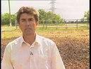 Биогумус как фактор повышения плодородия почвы