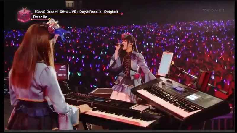 Roselia [BanG Dream! 5th☆LIVE Ewigkeit] ОТРЫВОК ВЫСТУПЛЕНИЯ С ПЕСНЕЙ「 軌跡」(Kiseki)🌹