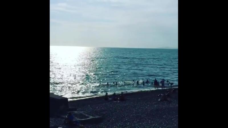 гагра пляж 2018