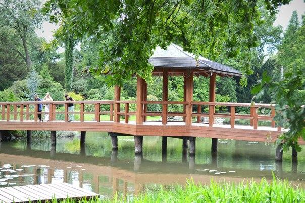 Ботанічний сад в японському стилі