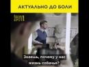 Комический актёр Владимир Зеленский сыгравший президента Васю в сериале Слуга народа теп