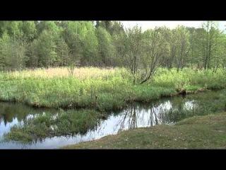 Мастерская рыболова с братьями Щербаковыми (5 серий)