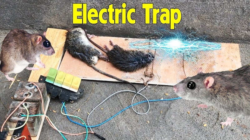 Electric Rat Trap | Rat trap with power battery 55000 Amazing House Mice
