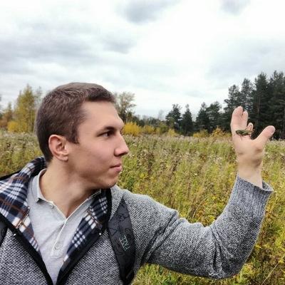 Владислав Силин