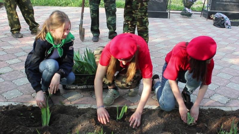 Озеленение Памятника воинам - участникам боевых действий в Афганистане и на Северном Кавказе