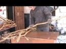 Потолок из дубовых веток
