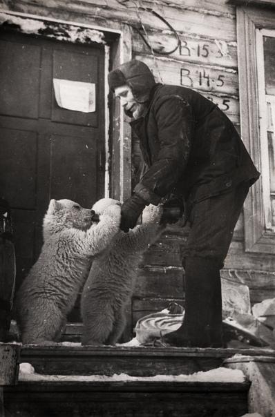 Фото сотрудника метеостанции, который кормит осиротевших медвежат.