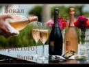 вино и бактерии