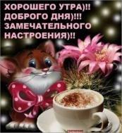доброе утро.хорошего дня