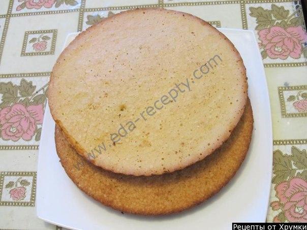 самые простые рецепты бисквитных тортов