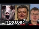 Пьяная свинья Порошенко аж захрюкал от удовольствия