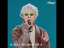 VIDEO Zion.T - Hello Tutorial feat. Seulgi of Red Velvet for Dingo Freestyle