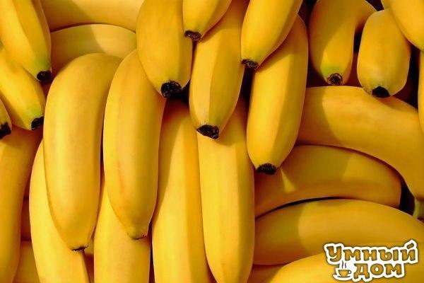 22 не придуманных причины полюбить бананы 1. Бананы помогают бороться с депрессией. В них много триптофана — вещества, из которого вырабатывается серотонин — гормон счастья. Поэтому съев банан легко улучшить настроение. 2. Бананы — единственный фрукт, который даже у младенцев не дает аллергической реакции. 3. Укрепление костей. Бананы задерживают кальций в организме, он не выводится вместе с мочой, а остается в организме и используется для укрепления костей. Это особенно важно для любителей…