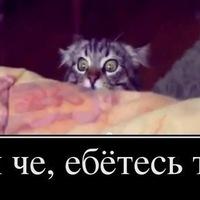 Артем Толстых, 18 января 1989, Ковров, id164888633