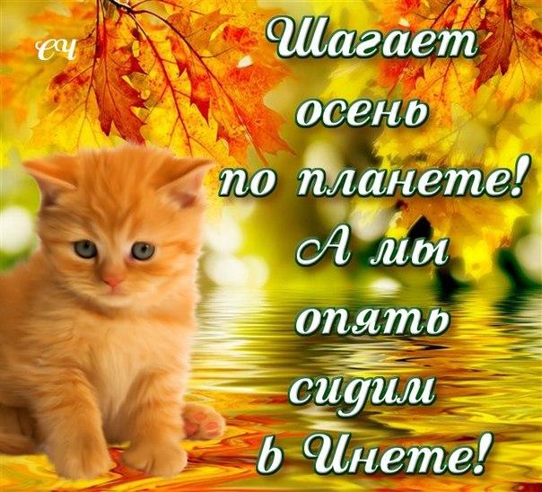 http://cs407530.userapi.com/v407530214/3092/zePH5hLXu_0.jpg