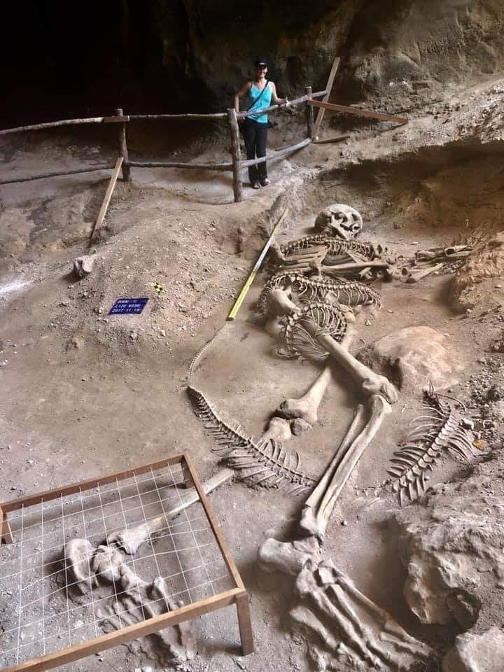 Уникальное открытие гигантского скелета в Таиланде - гиганта, возможно, убитого рогатой змеёй. EwX0jUbiv70