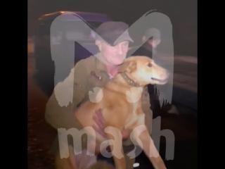 В Кирове ДПСники задержали пьяного водителя с собакой
