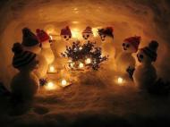 Снеговики отмечают Новый год!!!