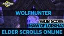 ESO - Maw of Lorkhaj 168.161 (World Record) Score - Blind Luck PUG (Wolfhunter)