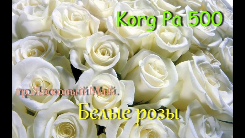 KorgStyle LM - Белые Розы (Korg Pa 500) DemoVersion