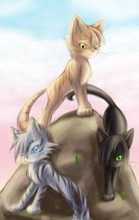 коты воители картинки героев