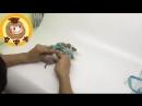 Видео с сайта AliExpress | Поводок для ёжика | Смешное видео.