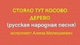 СТОЯЛО ТУТ КОСОВО ДЕРЕВО русская народная песня. ЗАТЕЯ сольное народное пение.