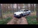 AUDI A8 Long 6.0 W12 Quattro старый премиум в лесу