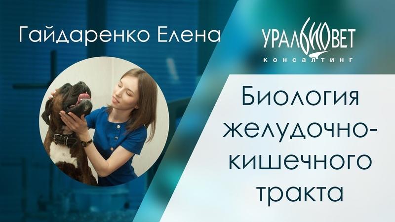 Биология желудочно-кишечного тракта. Гайдаренко Елена