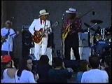 Phillip Walker &amp Long John Hunter - Chicago Blues Festival (1996)