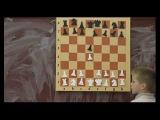 Гик Е.Я. Математика и Шахматы   16 Ферзевый гамбит (Майерт - Гаррвитц, 1848)