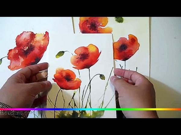Акварель - рисуем цветы полевые Маки (простой пример для начинающих)