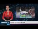 Новости КАКТАМ.TV Ебеня и мохнатые ноги