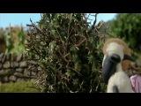 Барашек Шон / Shaun the Sheep: серия 32. Племянница фермера (The Farmer's Niece)