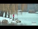 На Чернігівщині у річках гине риба